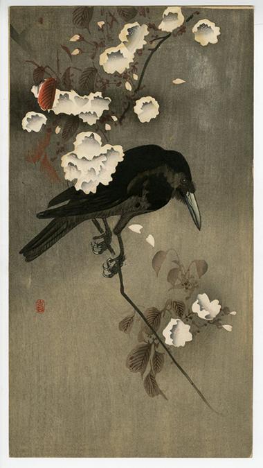 Ohara Koson (Shoson) Crow on Cherry Branch