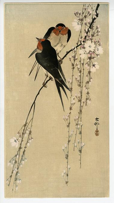 Ohara Koson (Shoson) Swallows and Cherry Blossoms
